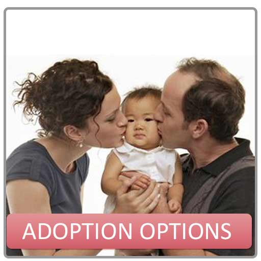 adoption not abortion essay